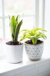 10 besten Pflanzen für das Badezimmer #Badezimmerarmaturen #Dunkel #Badezimmera…