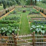 48 Most Popular Kitchen Garden Design Ideas - #Best # KitchenGardenDesign ... - Home Design