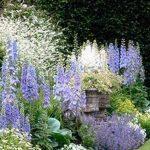 52 idées de design de jardins et de jardins 2019 #garten #hinterhof # ... - Jardin