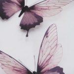 Arte de pared de lujo 3 increíble en vuelo mariposas mariposa 3D