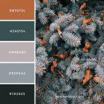 Aspen, United States Color Palette #107