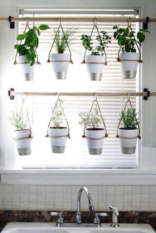 Diese 60 DIY Ideen für hängende Gärten liegen voll im Trend – Wohnideen und Dekoration
