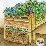 Fill the raised bed - These layers increase harvest success - Pin Coffee