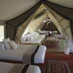 Glamping luxury camping holidays beds children's rugs   - Camping luxuriös - #b...