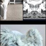Schaffell Teppiche grau, Xl Throw, echtes Leder, Teppiche Teppich, Outdoor Teppiche, Shag, Wu...