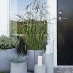 #gartengestaltung gräser #ziergräser blumentopf #beton #minimalistisch - https://bingefashion.com/haus