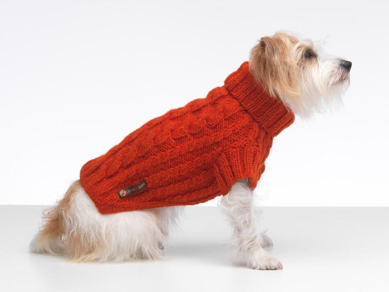 dog jumpers wilmot orange dog jumper apiysyr