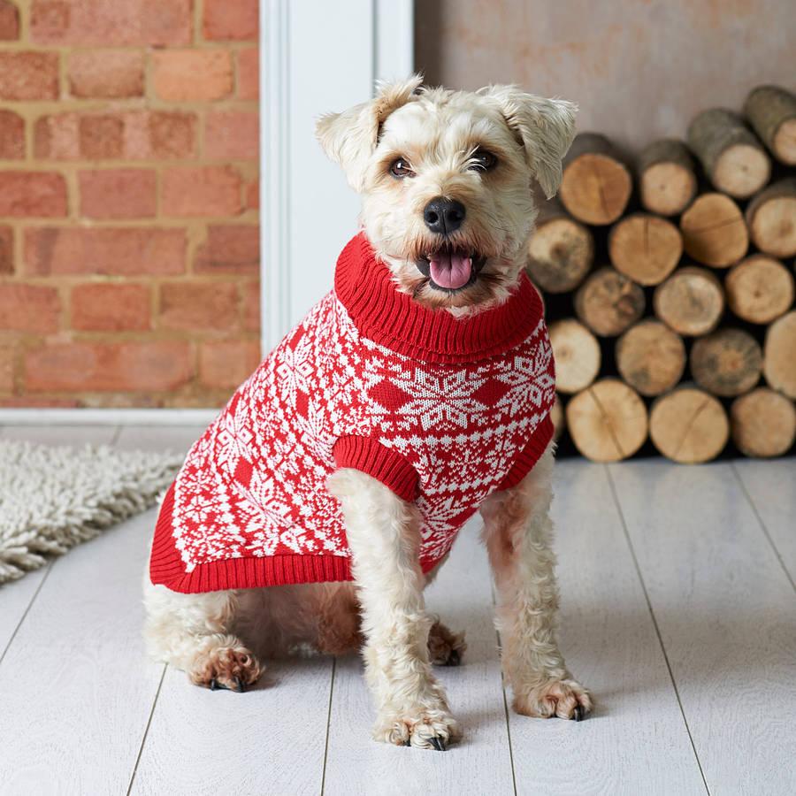 10 best christmas dog jumpers. fvrycsu